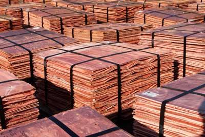 El sistema de gulliotinado procesa en promendio 1.100 cátodos diariamente.